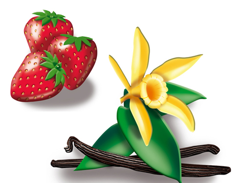 Erdbeeren Vanille